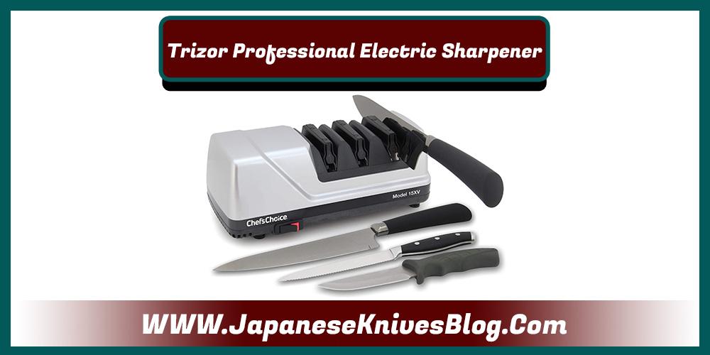 Best electric sharpener for Japanese knives